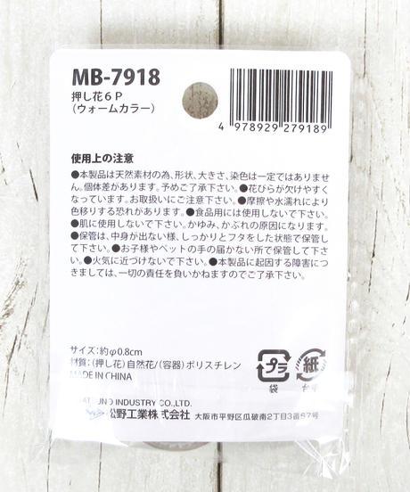 335317 押し花6P(ウォームカラー) 3色