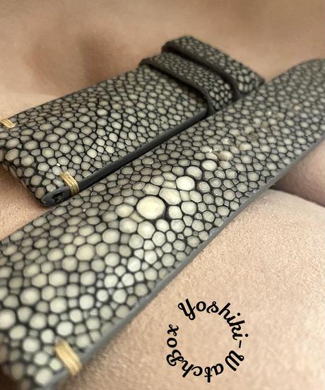 スティングレイ  腕時計ベルト グレー (ラグ幅24mm - バックル幅22mm)  sti-26