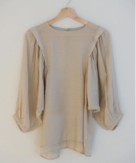sheer volume blouse