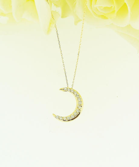 21041-361 K18YG D0.2ct Moon/N