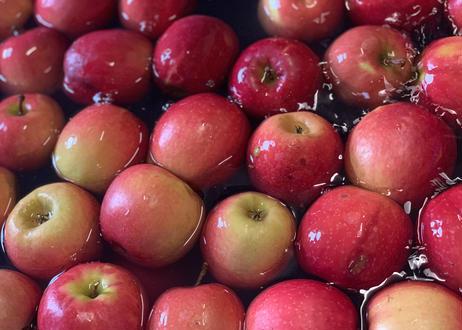 〜乾杯シードル!優しくなれるひとときを〜りんご屋まち子のアップルシードル【オリジナル・750ml】