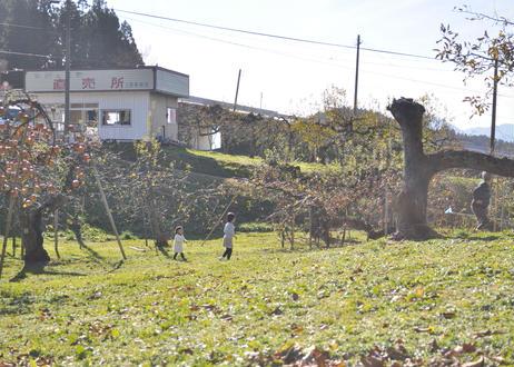 (4本セット)りんご屋まち子のアップルジュース 720ml
