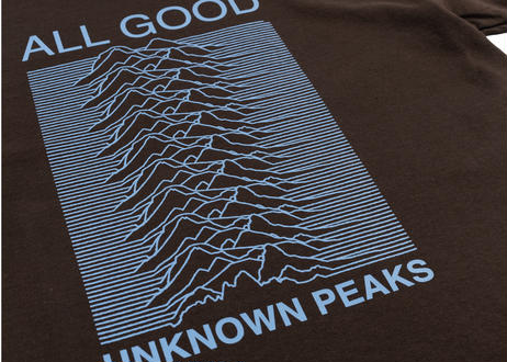 ALL GOOD Unknown Peaks Tee (Chocolate Brown)
