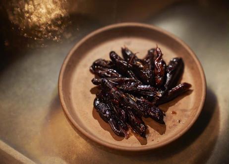 昆虫の佃煮3種セット