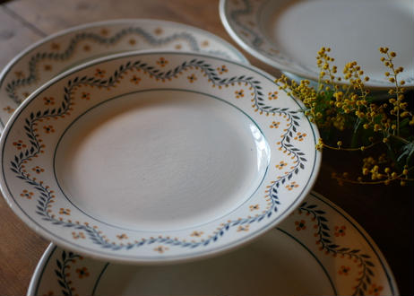 mimosa plate