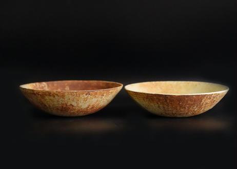 MN23 :  山茶碗(芽吹き / 成長)