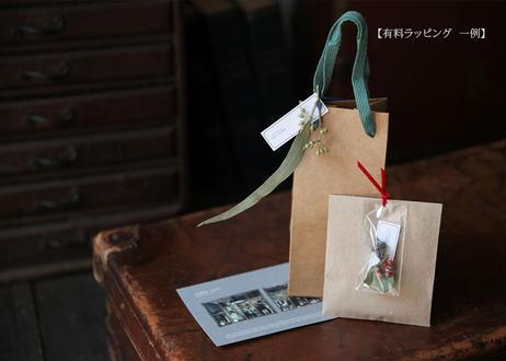 PANDA BRASS〜self winding (機械式/自動巻)