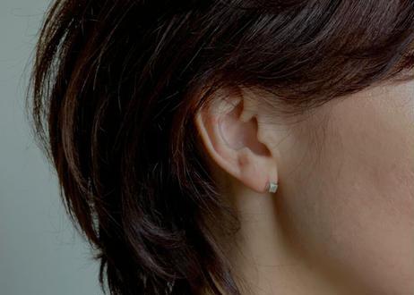 【SV925】かたすみ:Pierced Earrings