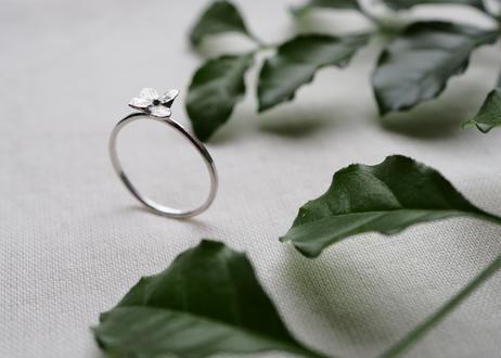 hydrangea ring  (silver925)