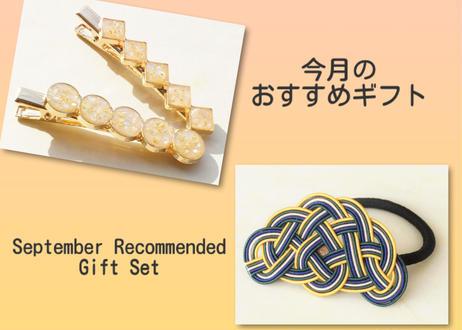 """* 9月おすすめ『ギフト』アクセサリーセット(ラッピング付) * September Recommended """"Gift"""" Accessory Set"""