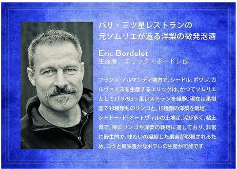ポワレオータンティック/エリック ボルドレ Poiré Authentique/Eric Bordelet アルコール分5% 750ml