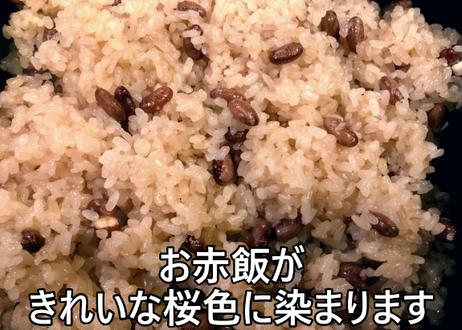 十六ささげの種 20g 【北海道の在来品種】 出来上がりは桜色のお赤飯