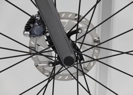 #221 アルティメット CF SL Disc 8.0 2019 Sサイズ(172-178cm) grey metallic