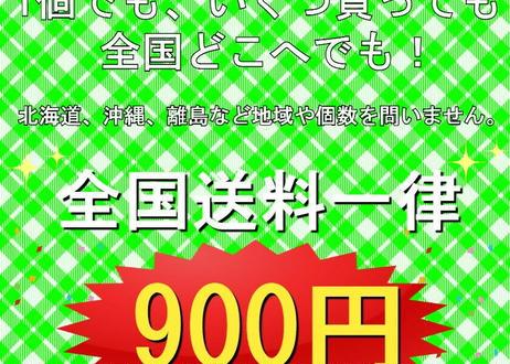 公式ステッカー付  SPASHAN【9SET】選べる スパシャン 2021 SET商品 で 水アカバスター2 200mlプレゼント!