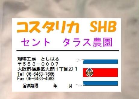 コスタリカ  SHB セントタラス  100g