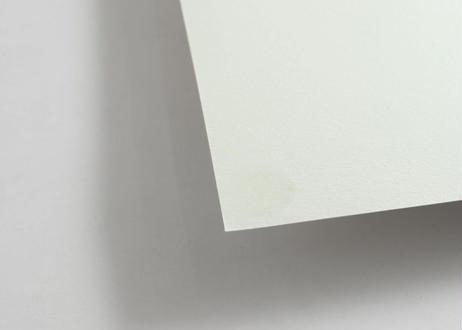 猪原秀陽 We're バッドアニマルズ 4 原画 簡易額装 [送料無料]