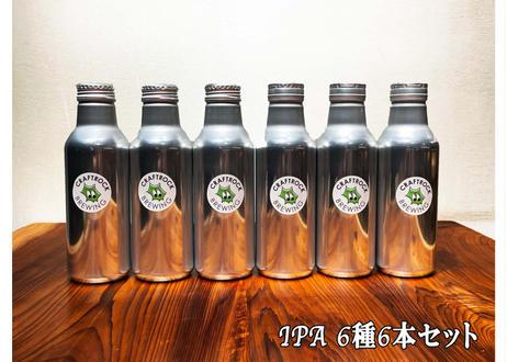 ★限定★ IPA6種  550ml缶ビール 6本セット (550ml)