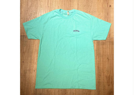 """""""DRINK ALL DAY"""" TEE    LIGHT GREEN"""
