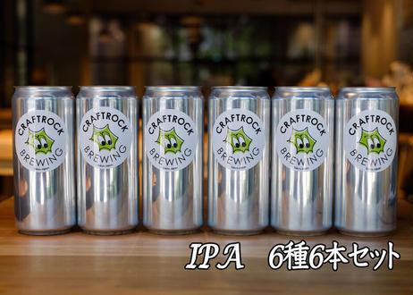 ★限定★ IPA6種  1L缶ビール 6本セット(1000ml)