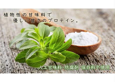 リハテインWPI ココア味  500g