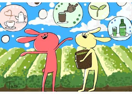 【e-2】お茶うさぎポストカード②