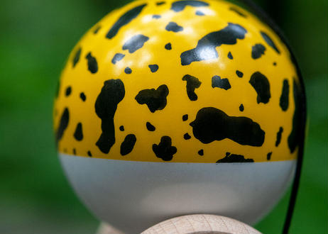 Poison Frog -Yellow-