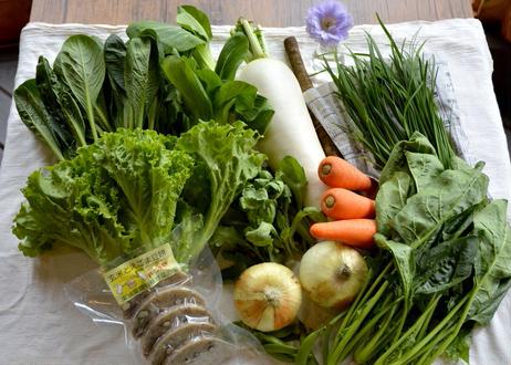 旬の野菜+手づくり農産加工品詰合せ月1定期便(6ヶ月コース)