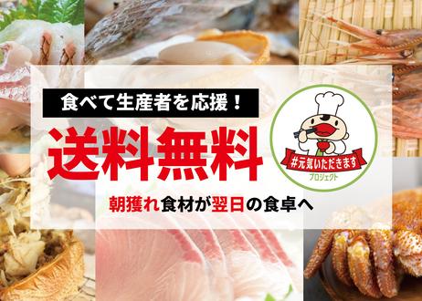 長島町自慢の魚をつめた鮮魚ボックス