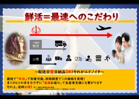 【新鮮すぎるカンパチ】出荷ギリギリに捌いて真空で空輸配送!(600~800g)
