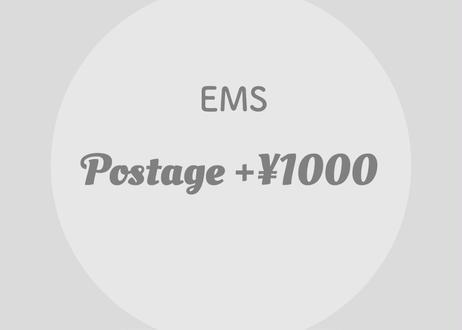 Change shipping method     『EMS』