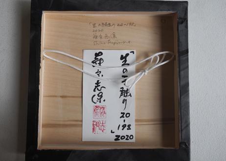 Shiho Fujiwara:藤原 志保:生の手触り 20-198