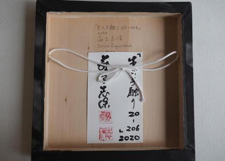 Shiho Fujiwara:藤原 志保:生の手触り 20-206