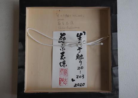 Shiho Fujiwara:藤原 志保:生の手触り 20-203