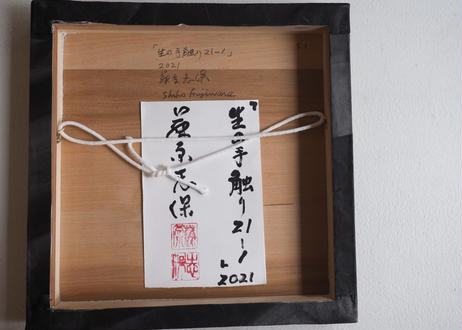 Shiho Fujiwara:藤原 志保:生の手触り 20-164