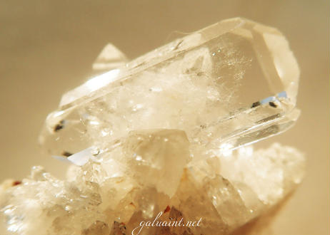Tomaz Gonzaga crystal