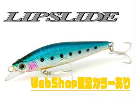 Lip Slide 110mm 38g
