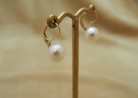 South Sea Pearl Earrings (White 10mm)