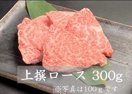 送料無料!焼肉三昧セット  2.1kg【3種類のタレ付き】