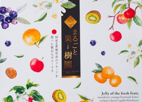 【一部エリア送料無料】まるごと果樹園(フルーツゼリー12個入)6種X各2個