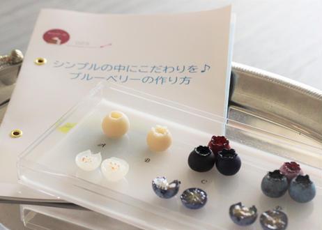 【オリジナルレシピセット】009_ ブルーベリー