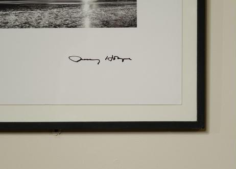 """Jenny Holzer / """"SHRIEK""""2004"""