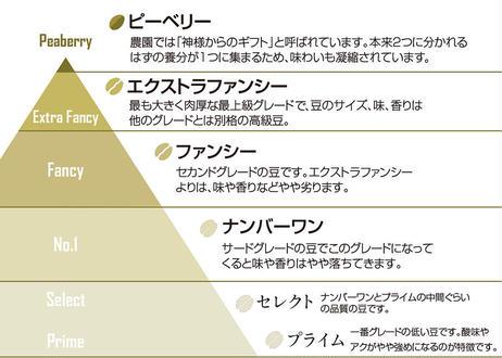 ★定期便:1ヶ月毎★Hawaii KAUブレンド(ビター) 200g【粉】