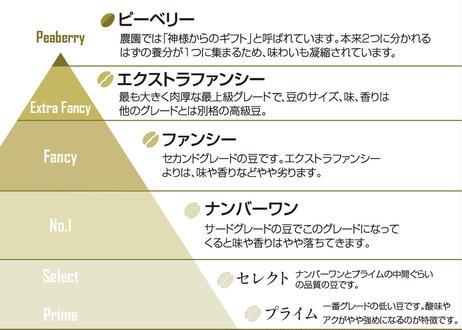 最上級ExtraFancy 12g【ドリップパック5個】:100%カウコーヒー