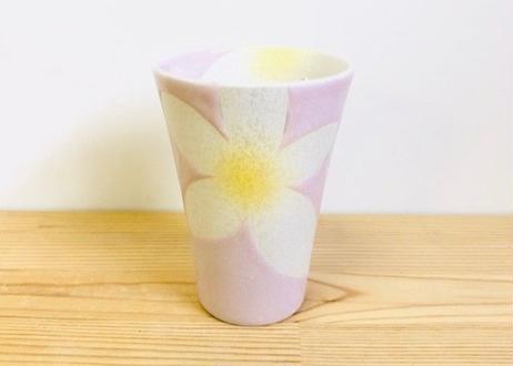 錦花美人(ピンク)ビアカップ