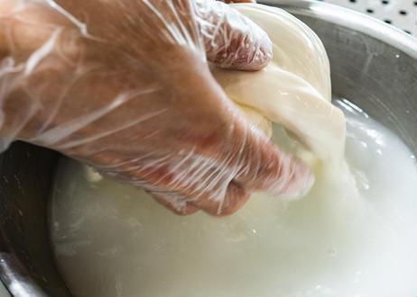 【夏季・数量限定!】完熟マンゴーをそのまま贅沢にクリーミーなチーズに詰め込んだ『とろける完熟マンゴーブッラータ』