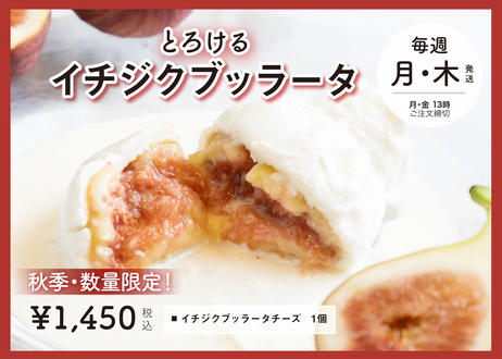 【秋季・数量限定!】イチジクをそのまま贅沢にクリーミーなチーズに詰め込んだ『とろけるイチジクブッラータ』