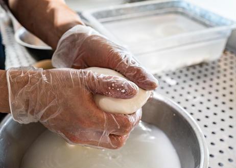 【秋季・数量限定!】シャインマスカットをそのまま贅沢にクリーミーなチーズに詰め込んだ『とろけるシャインマスカットブッラータ』2個セット