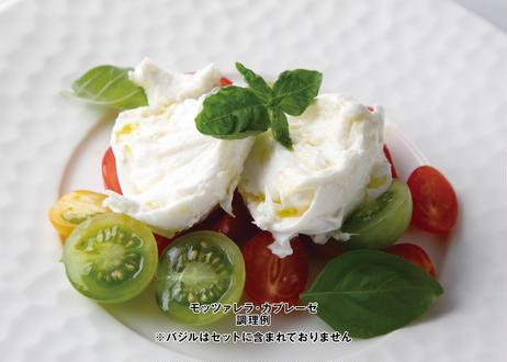 【銀座・NABUCCOのパスタセット】レストランの選べるパスタソース[2食分]とブッラータチーズのカプレーゼセット