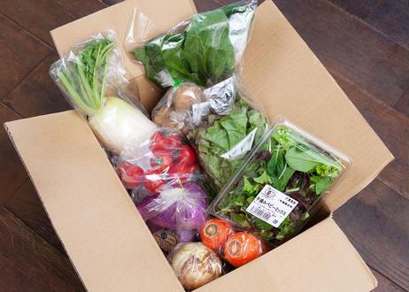 有機・特別栽培  レストランの野菜ボックス [S] 【消費税・基本送料込み】