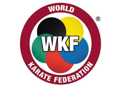 55%OFF【アウトレット品】世界空手連盟公認空手マット【WKF‐20R】※ロゴの刻印なし 5枚1セット